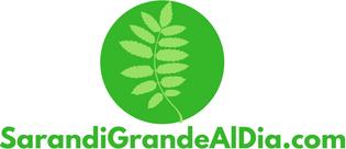 SarandiGrandealdia.com